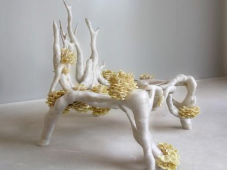 myceliumchair_Erick-Klarenbeek-616x462